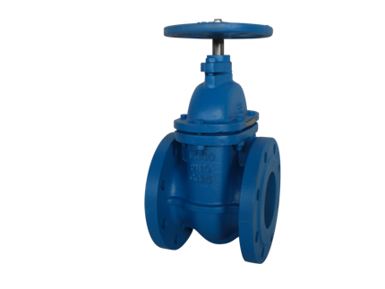 Valvotubi fig6 cast iron gate valve